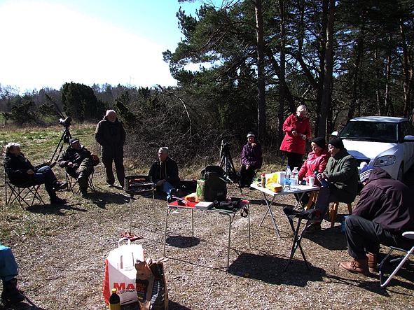 ejderstrack-med-grillning-vid-ekstakusten-2_2015-04-12_s-o-lundgren